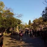 Parque muito arborizado.