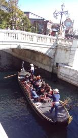 Mini Veneza.